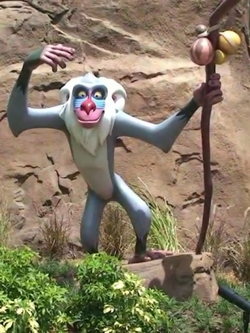 Rafiki at Disney Park