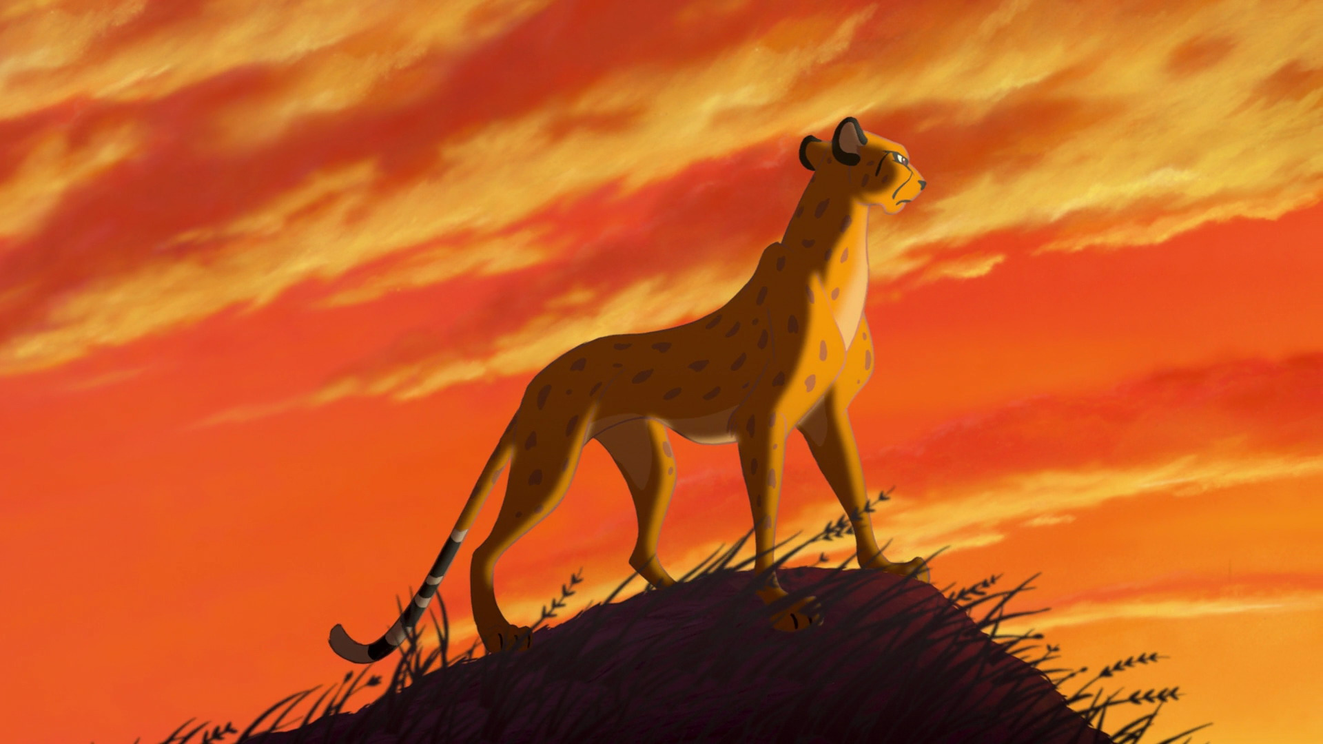 Image result for lion king opening cheetah