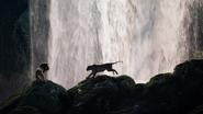 Lionking2019-animationscreencaps.com-9548