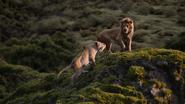 Lionking2019-animationscreencaps.com-9560