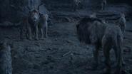 Lionking2019-animationscreencaps.com-11295