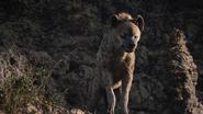 Lionking2019-animationscreencaps.com-3313