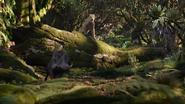 Lionking2019-animationscreencaps.com-9063