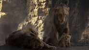 Lionking2019-animationscreencaps.com-5370