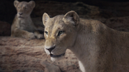 Lionking2019-animationscreencaps.com-7330