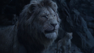 Lionking2019-animationscreencaps.com-11252