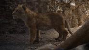 Lionking2019-animationscreencaps.com-5272