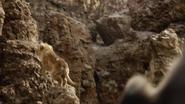 Lionking2019-animationscreencaps.com-5508