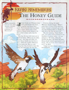 Honey Guide 1