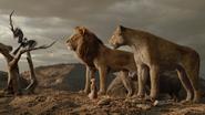 Lionking2019-animationscreencaps.com-10832