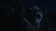 Lionking2019-animationscreencaps.com-7696