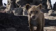 Lionking2019-animationscreencaps.com-2996