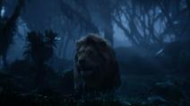 Lionking2019-animationscreencaps.com-10049
