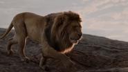 Lionking2019-animationscreencaps.com-276