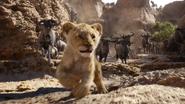 Lionking2019-animationscreencaps.com-4658