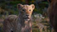 Lionking2019-animationscreencaps.com-9825