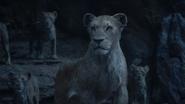 Lionking2019-animationscreencaps.com-11338
