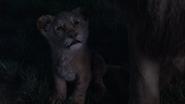 Lionking2019-animationscreencaps.com-3648