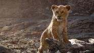 Lionking2019-animationscreencaps.com-5179