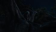 Lionking2019-animationscreencaps.com-1129