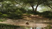 Lionking2019-animationscreencaps.com-6623