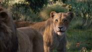 Lionking2019-animationscreencaps.com-9776