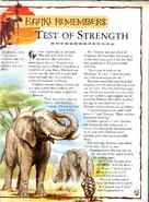 Test of Strength
