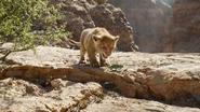 Lionking2019-animationscreencaps.com-4555