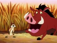 KBMF Timon & Pumbaa11