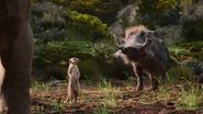 Lionking2019-animationscreencaps.com-9229