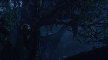 Lionking2019-animationscreencaps.com-9983