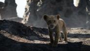 Lionking2019-animationscreencaps.com-2945