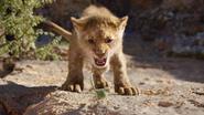 Lionking2019-animationscreencaps.com-4565