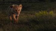Lionking2019-animationscreencaps.com-3577