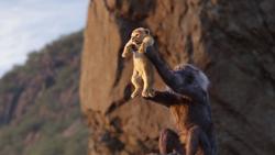 Lionking2019-animationscreencaps.com-426