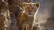 Lionking2019-animationscreencaps.com-4953