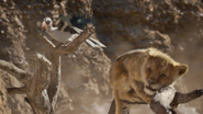 Lionking2019-animationscreencaps.com-4764