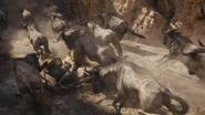 Lionking2019-animationscreencaps.com-4895