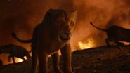 Lionking2019-animationscreencaps.com-11792