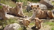 Lionking2019-animationscreencaps.com-2114