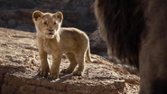 Lionking2019-animationscreencaps.com-4410