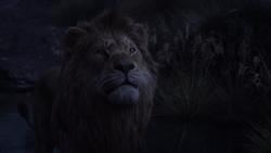 Lionking2019-animationscreencaps.com-10387