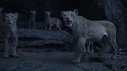 Lionking2019-animationscreencaps.com-11218