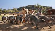 Lionking2019-animationscreencaps.com-2588