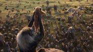 Lionking2019-animationscreencaps.com-403