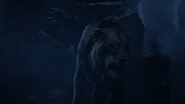 Lionking2019-animationscreencaps.com-4152