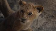 Lionking2019-animationscreencaps.com-5430