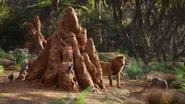 Lionking2019-animationscreencaps.com-8045