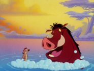 BN Timon & Pumbaa5