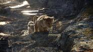 Lionking2019-animationscreencaps.com-2868